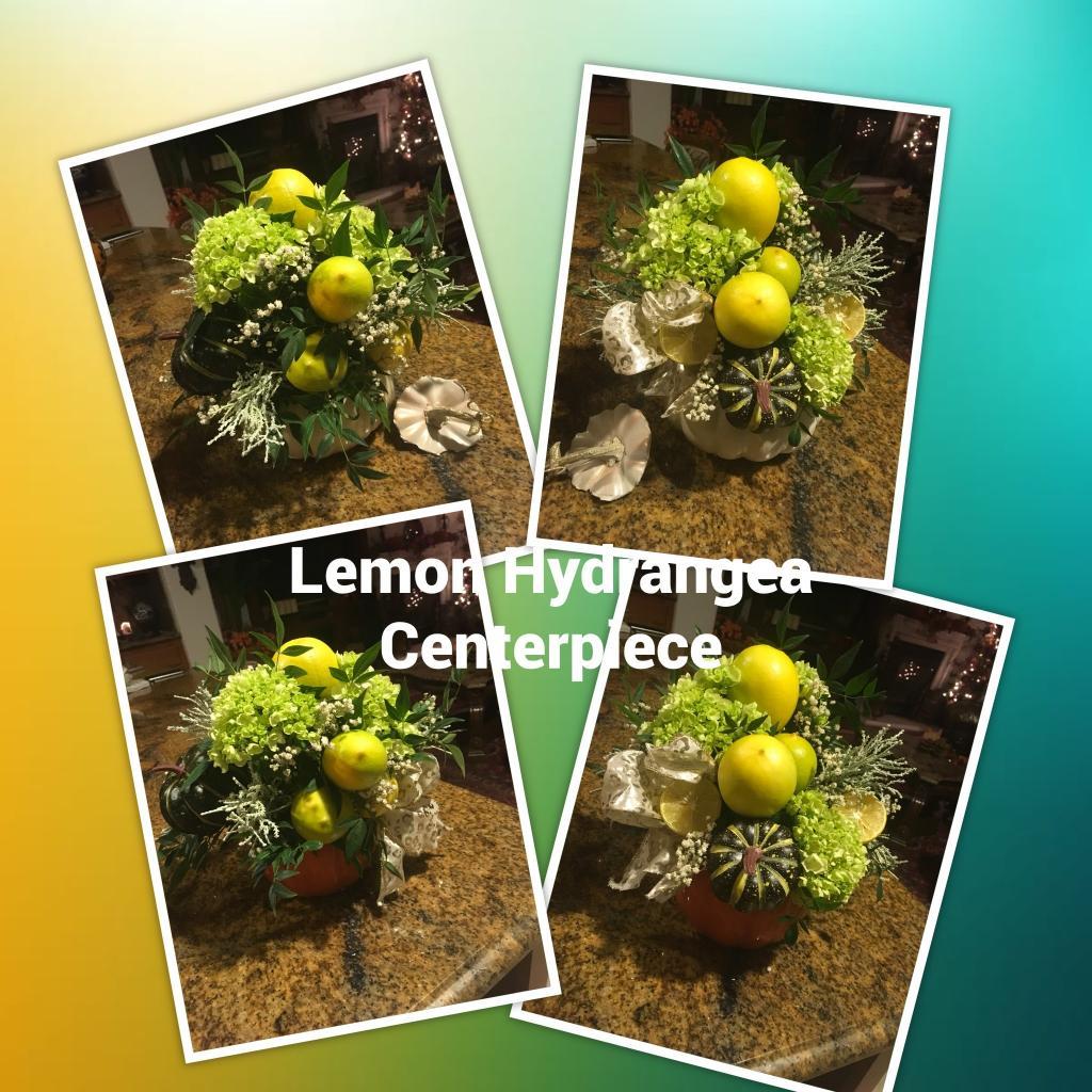 Lemonhydrangeacenter